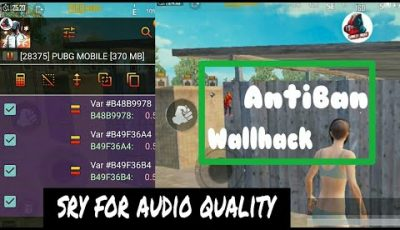 PubG Wallhack – How To Find Pubg Mobile Wallhack Values For Kirin Exynos mediatek helio Processer